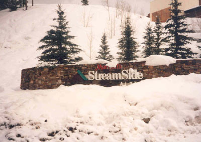 View details: Streamside at Vail-Douglas